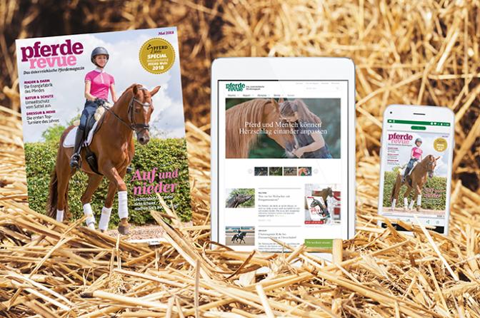 Pferderevue Probeabo 3 Ausgaben Print/Digital