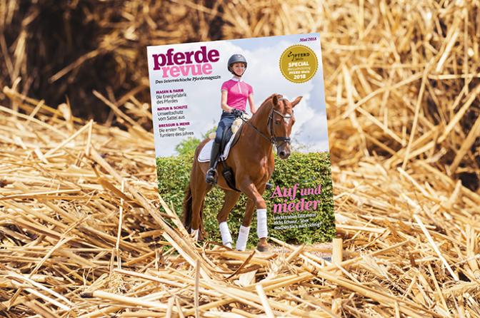 Pferderevue Print